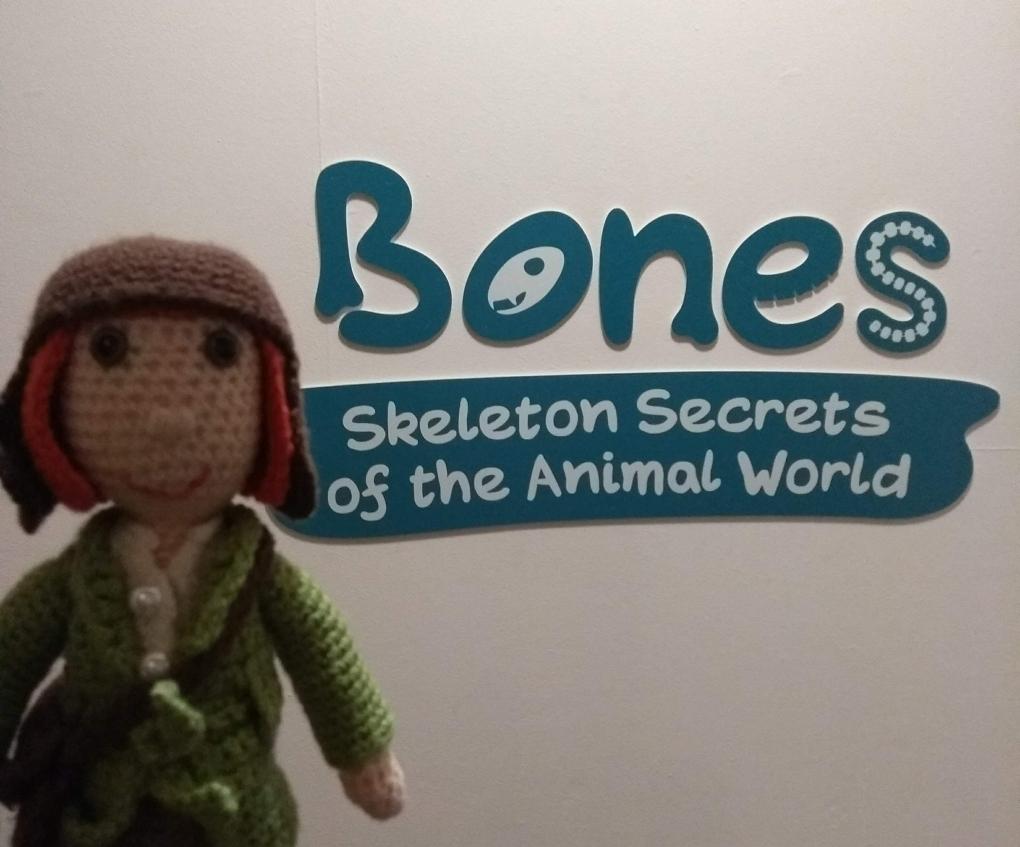 bones-5.jpg